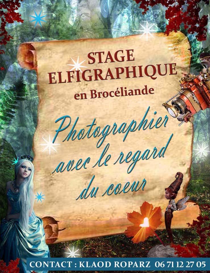 Affiche Stage Elfigraphique web